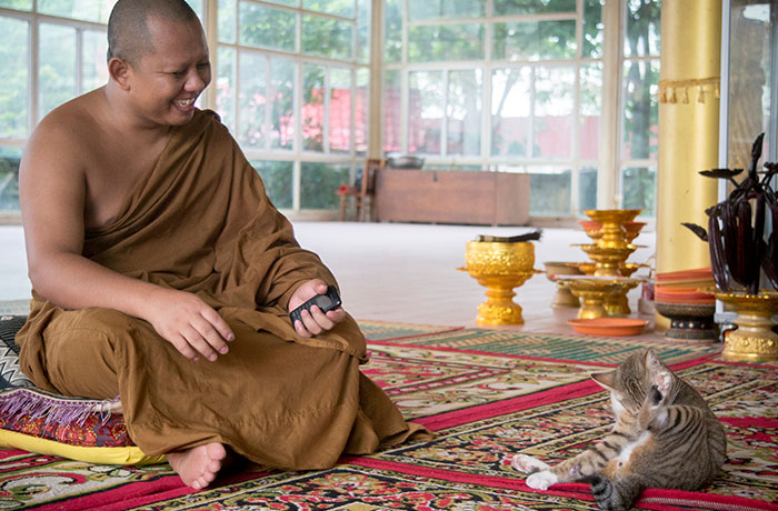 Monk with his cat