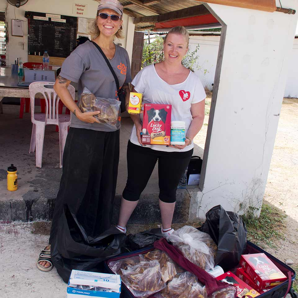 Visitor donating supplies for the dogs at the shelter